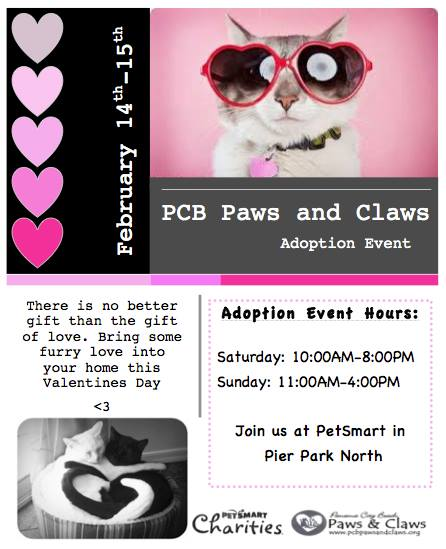 Paws and claws february event
